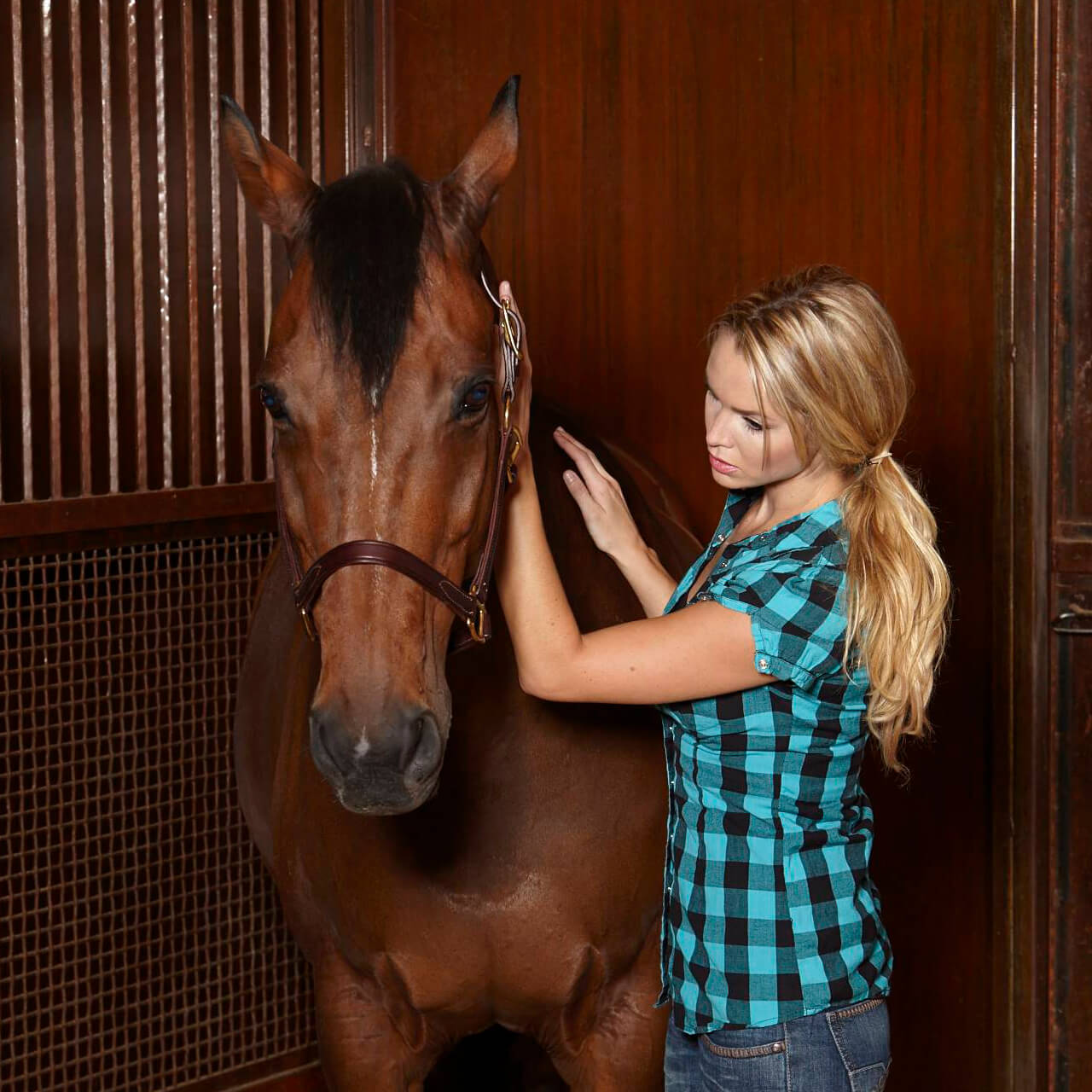 woman checking horses respiratory rate